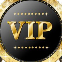 TheVIPGroup