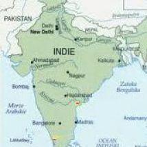 india-bet